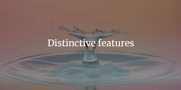 Distinctive-features